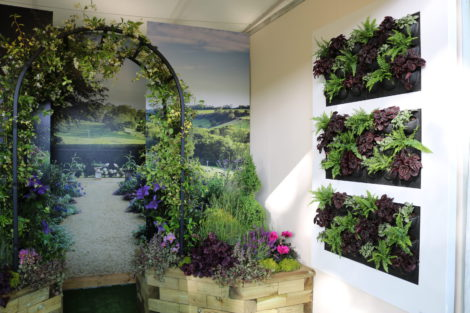LivePicture at RHS Chelsea