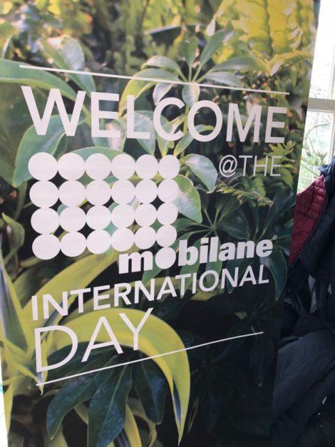 Mobilane International Conference 2018