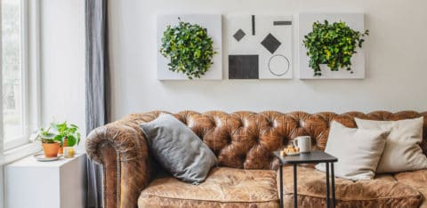 LPGO-living-room-480x234
