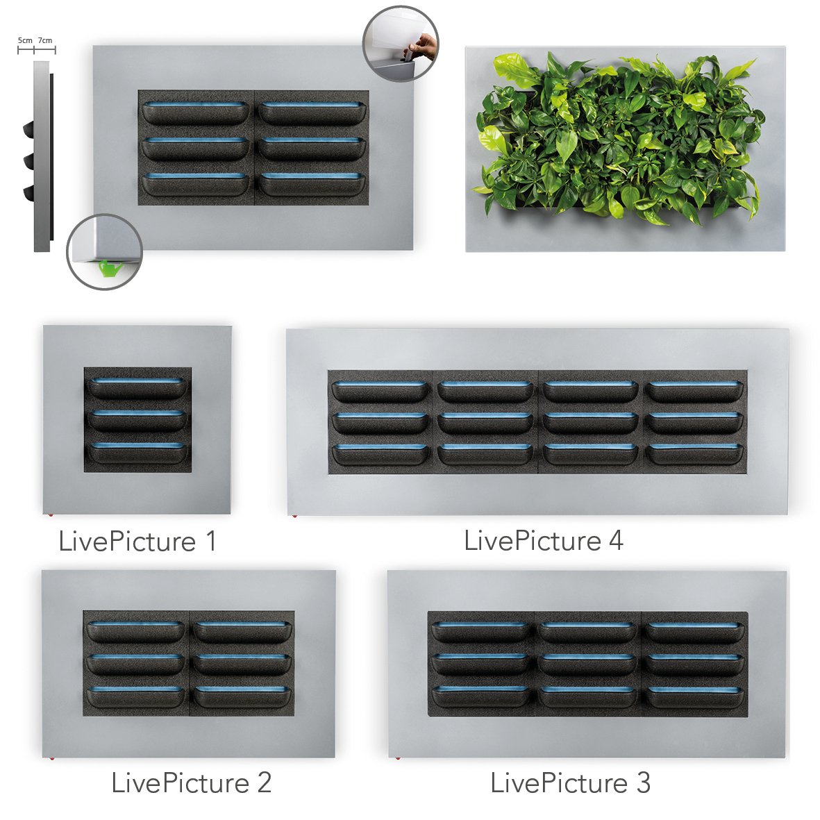 Mobilane LivePicture Planten schilderij