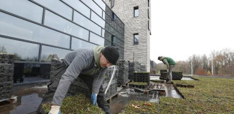 Mobilane MobiRoof Groen dak bij Van der Valk Heerlen