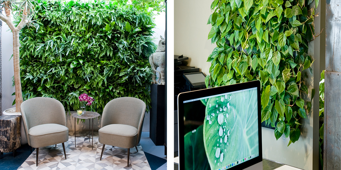 Mobilane LivePanel PACK groene wandsysteem