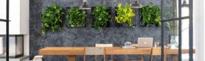 Mobilane LivePicture GO - Plantenschilderij