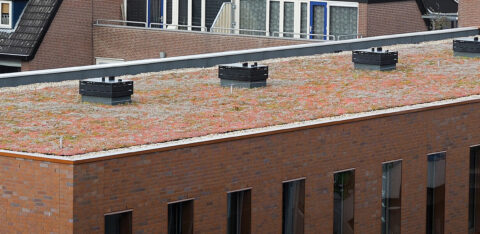 Mobilane MobiRoof green-blue roof