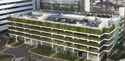 WallPlanter-P-First-garage-Rotterdam201607-1-1920x936-1-480x234