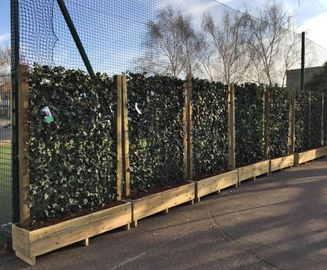 Hedera Screens - Woodside Primary School - Green Screens - Jan 18 (5)