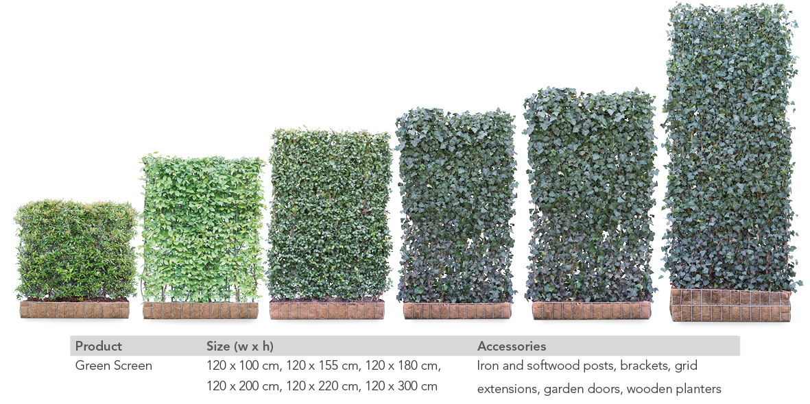 Mobilane Green Screen An Instant Green Hedge Panel Mobilane
