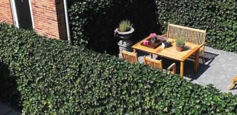 Mobilane Kant & Klaar Haag - groene afscheiding tuin