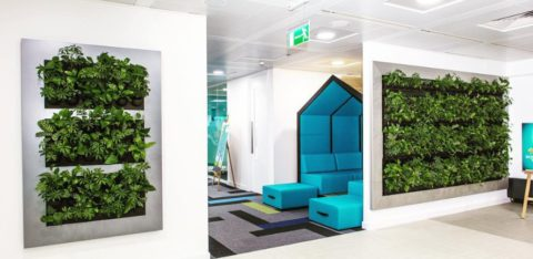 Live Divider GL Design Space