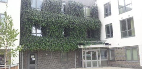 2012-08-13-triscott-house-480x234