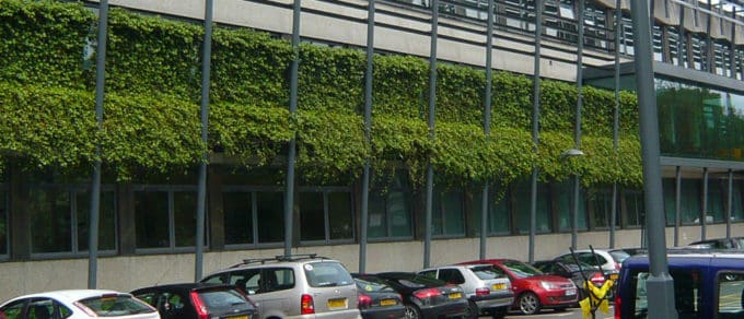 Header-WallPlanter-Kendal-College