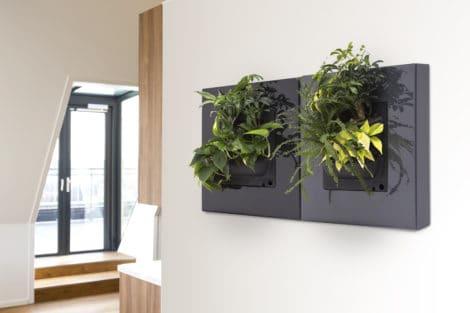 LivePictureGO_GREY&BLACK_Living Room