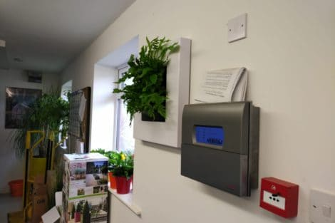 Urban Planters Reading_3