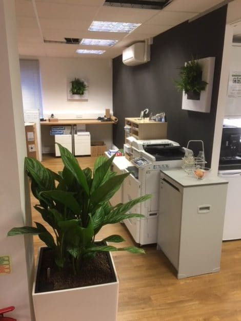 Urban Planters Southampton Office LivePicture GO