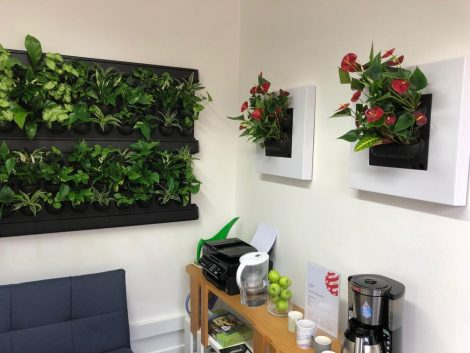 The perfect backdrop for Mobilane's new Bath office