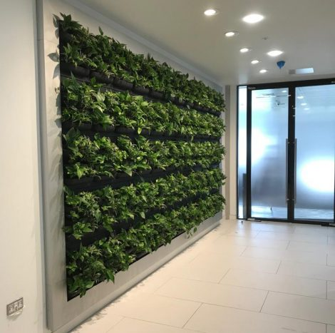 LivePanel for instant nature in an office environment