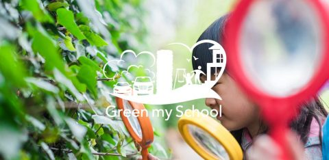 Green My School Sutton Header
