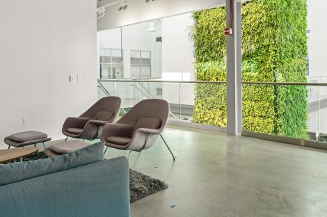 Green vertical sustainable wall