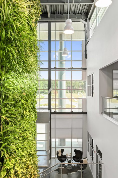 Green vertical wall in head office