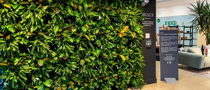 Live Panel Green Wall at Heal's London Entrance