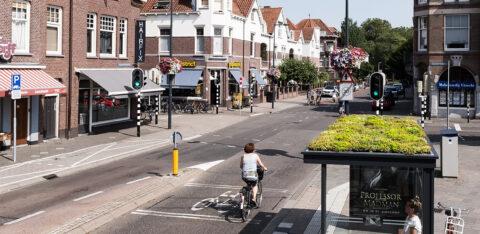 Mobilane MobiRoof sedum op 316 bushokjes in Utrecht