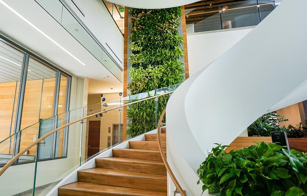 Groene wandplanten bij Colorado Health Foundation in Denver SH2