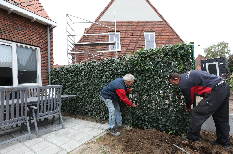 Mobilane Green Screen Vreewijk Netherlands