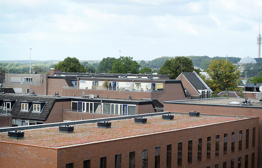 Mobilane MobiRoof Green Roof system