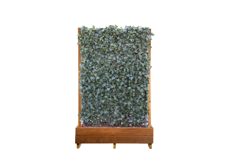 Mobilane Green Screen in planter