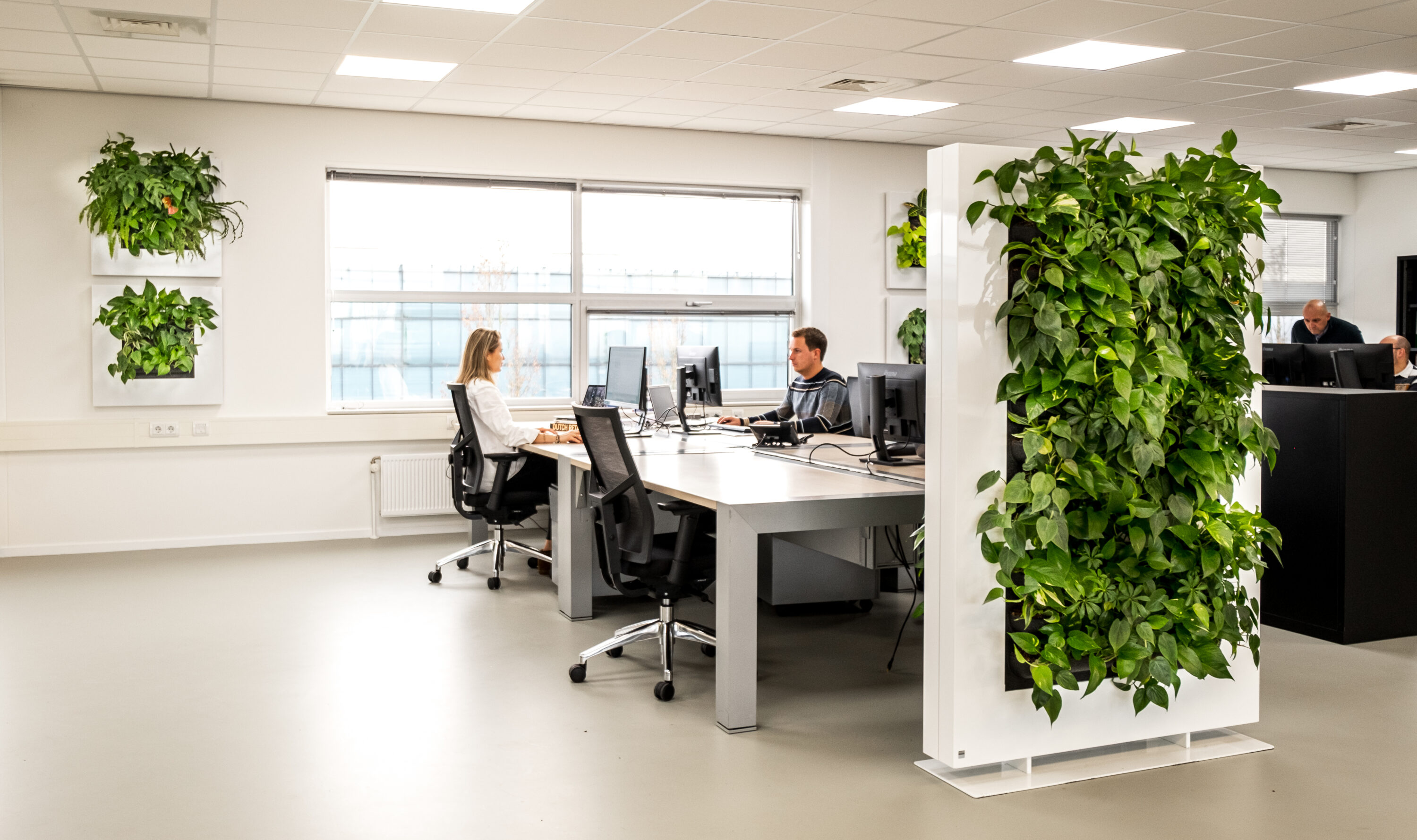 Mobilane LivePanel 6 benefits of plants in the office