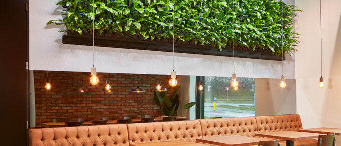 Mobilane LivePanel Indoor Living wall installed in Kapimex Breda to bring nature, plants and visual impact to retail showroom