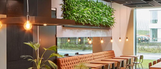 Mobilane LivePanel Indoor levende muur in de showroom van Kapimex in Breda