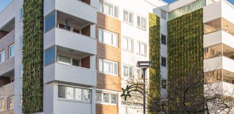 Mobilane groene oplossingen zoals groene daken en gevels steeds belangrijker in steden