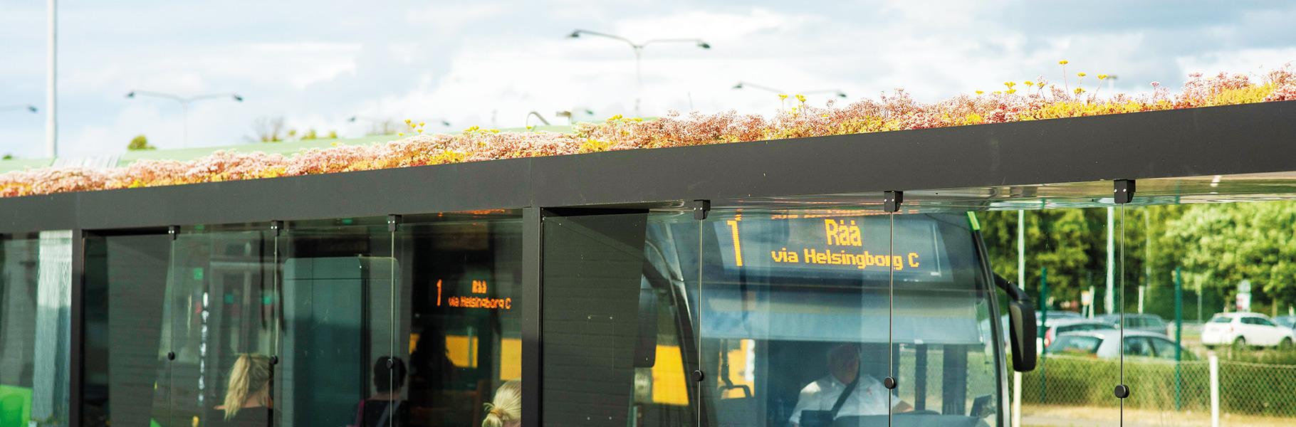 Groene daken op bushokjes Zweden