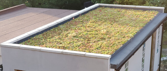 Mobilane MobiRoof A MobiRoof green roof has been installed by a homeowner on his garage roof in North London. Read more about this project here.