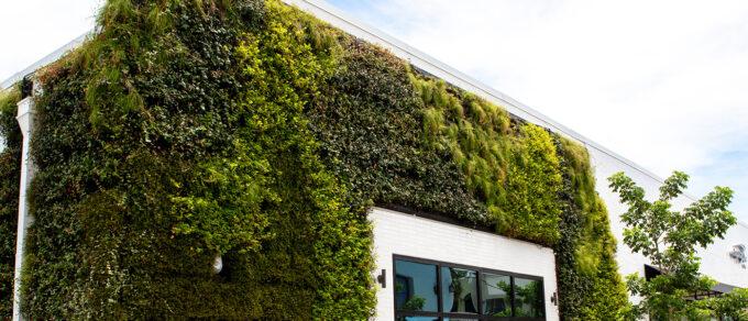 Mobilane LivePanel Outdoor Green facade at Capital One Café co-working space