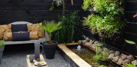 Mobilane LivePanel PACK A peek in Jellina Detmar's garden