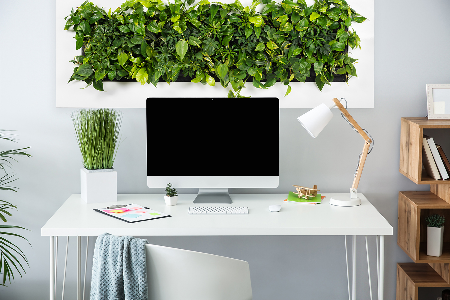 Mobilane LivePicture GO 10 Benefits of plants in home
