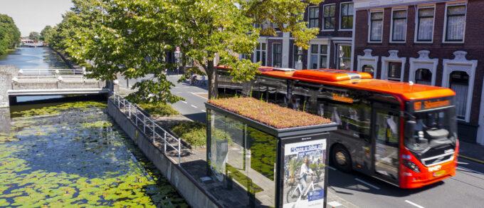 Grüne Buswartehäuschen für Gouda