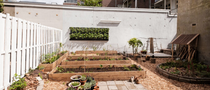 Mobilane LivePanel living wall planted with strawberries in Amsterdam city farm