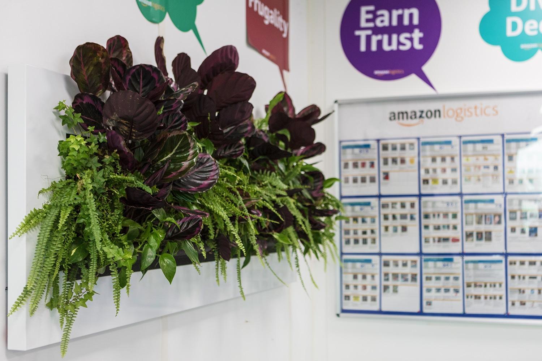 Mobilane LivePicture website Big Horizontal Living plants at Amazon Hub Bristol