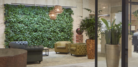 Mobilane LivePanel Indoor Interview: Biophilic Design in the office