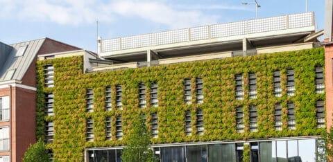 Mobilane website Header advantages green wall outdoor