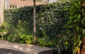 Die Mobilane Fertighecke als grüner Zaun in Amsterdam