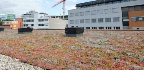 Mobilane joins Green Roof Organisation