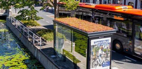 Mobilane MobiRoof green roof bus shelters can help face the biodiversity challenge in London