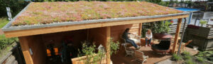 Mobilane website Header World Green Roof Day 2