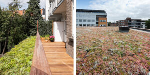 Mobilane MobiRoof 1 World Green Roof Day