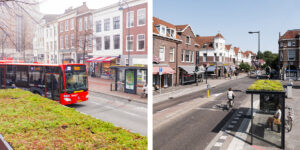 Mobilane MobiRoof 3 Green roof bus shelters can help face the biodiversity challenge in London
