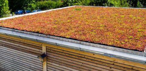 Mobilane MobiRoof Ein Gründach in Murnau an den Alpen
